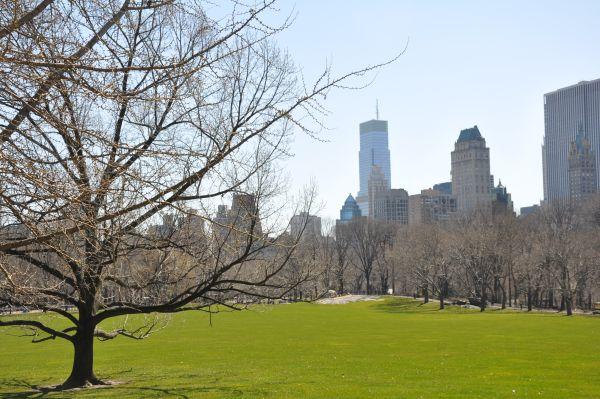 Central Park near 67th street
